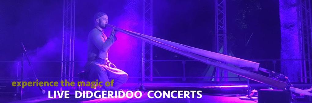live didgeridoo concerts