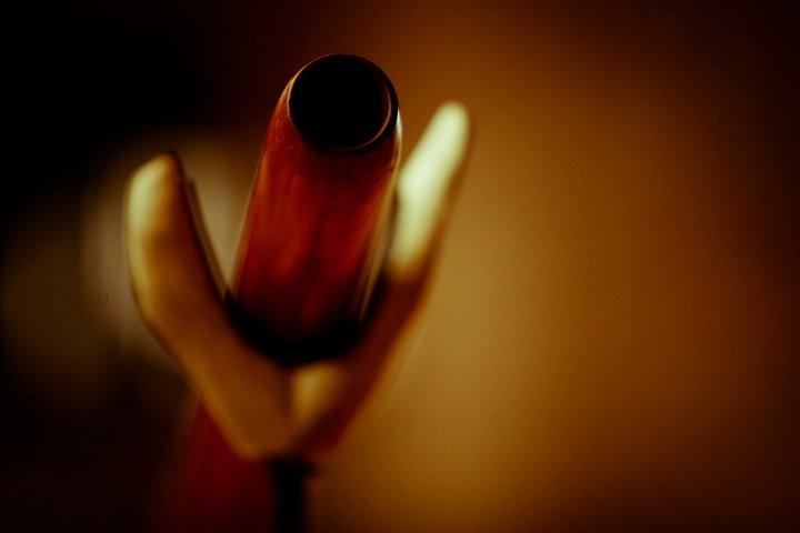 Didgeridoo lessons by Dubravko